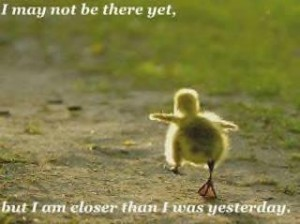 Duckling-not-there-yet-300x224
